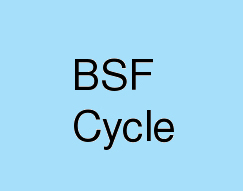 BSF-Cycle