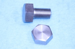 F929  82-0929 Triumph Cycle Stainless Bolt HC516012  R06